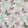 Vlinders op zilver