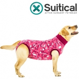 Recovery suit /  Afspeenromper hond   Roze