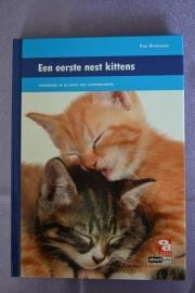 OD een eerste nest kittens