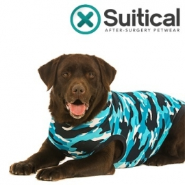 Recovery suit /  Afspeenromper hond   Blauw