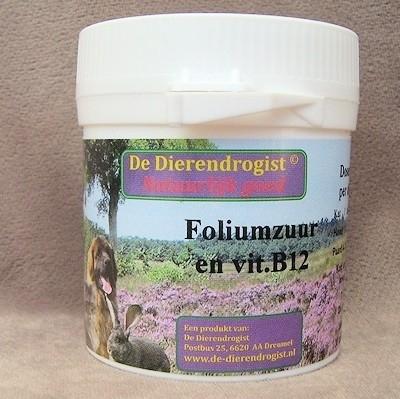 Foliumzuur en vit B12 100 tabletten