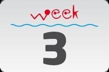 4 - Week 3 / January 18 - January 25
