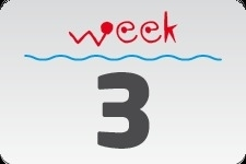 4 - week 3 / 16 januari - 23 januari