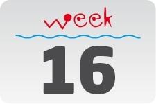4 - week 16 / 18 april - 25 april