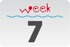 1 - week 7 / 13 februari - 20 februari