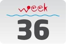 1 - week 36 / 5 september - 12 september