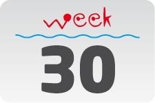 4 - week 30 / 25 juli - 1 augustus