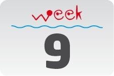 1 - week 9 / 27 februari - 6 maart