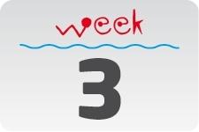 1 - week 3 / 15 januari - 22 januari