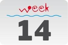 4 - Week 14 / April 4 - April 11