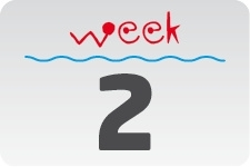1 - week 2 / 8 januari - 15 januari