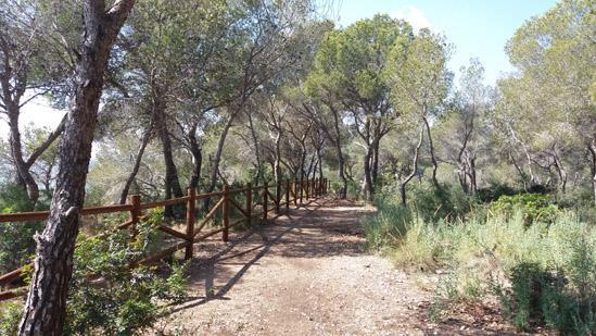 Paseo ecológico por las calas de Calpe y Benissa