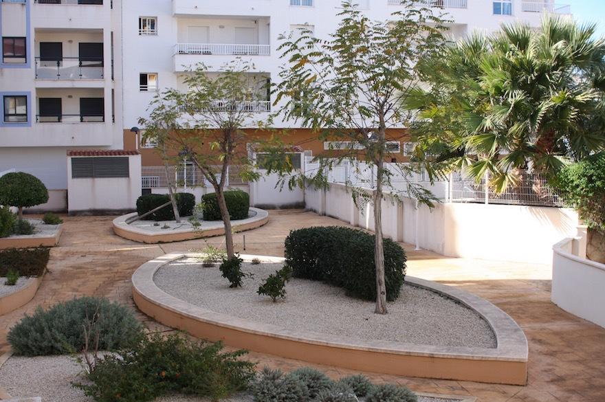 Calamora_garden