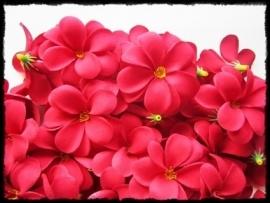XL-bloem - `Hawaï` - rood zijde - 7 cm.