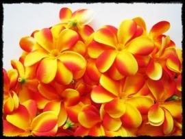 XL-bloem - `Hawaï` - rood / geel zijde - 7 cm.