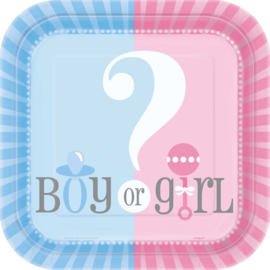 Boy or Girl? Gender Reveal feestartikelen - bordjes (10st)