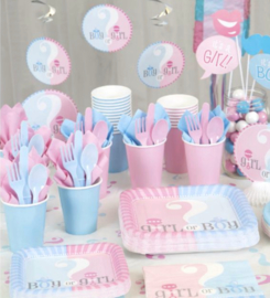 Boy or Girl? Gender Reveal feestartikelen - Hangdecoratie (3st)