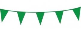 Vlagslinger/ vlaggenlijn groen (10m)