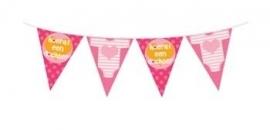 Geboorte feestartikelen: Hoera een dochter vlaggenlijn