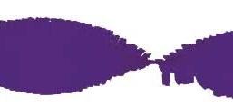 Crepe slinger paars 24 meter