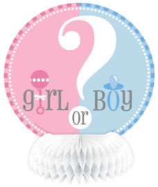 Boy or Girl? Gender Reveal feestartikelen - Honeycombs (4st)