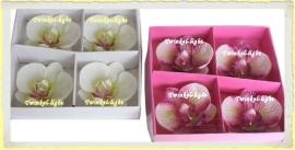 Drijfkaars Orchidee in 2 kleuren