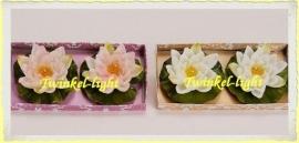 Drijfkaars Waterlelie in twee kleuren