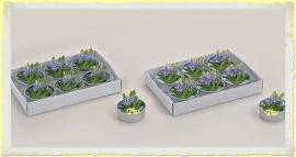 Theelicht/Waxinelicht Lavendel