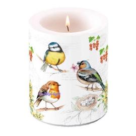 Kaars/Windlicht Birds meeting
