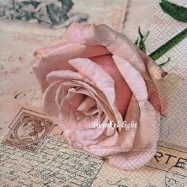 Servetten Postcard Rose