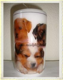 Kaars Honden
