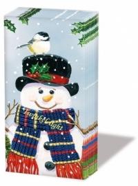 Papieren zakdoekjes Sneeuwpop
