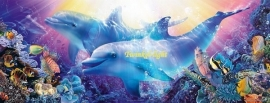 Puzzel Dolfijn panorama 1000 stukjes