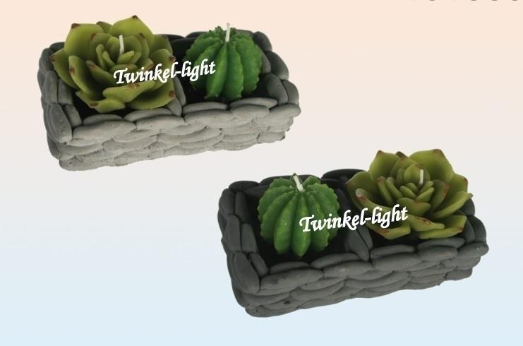 Kadoset met 2 cactus kaarsen in schaaltje