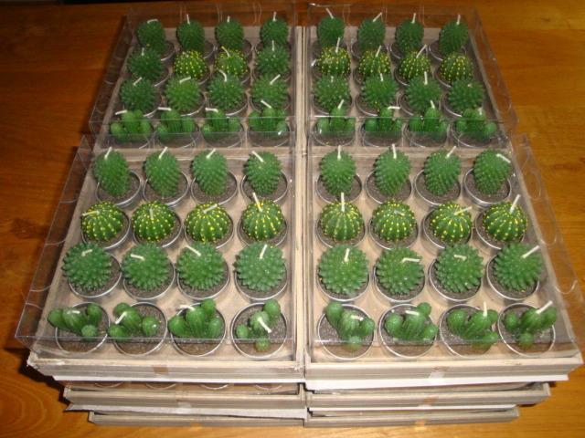 Cactus theelichten 192 stuks Hannelore Primusz.jpg