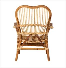 Rotan fauteuil Baukje