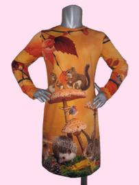 4462 - Herfst jurkje