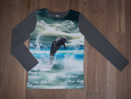 3505 - Dolfijnen longsleeve of shirt