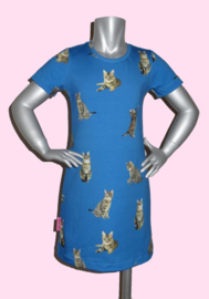 4213 - Poezen jurkje blauw