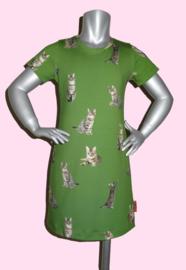 4214 - Poezen jurkje groen