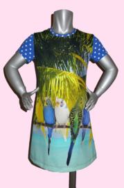 4346 - Parkieten jurkje