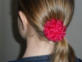 7030 - fuchsia kleurige roos