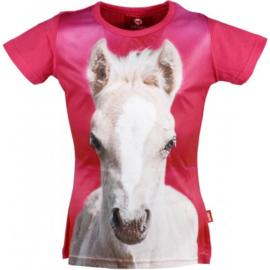 t-shirt (maat 152)