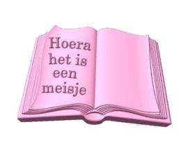 Boek met tekst mal