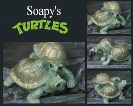 Soapy's Turtles mal