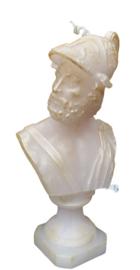 Buste van Zeus mal