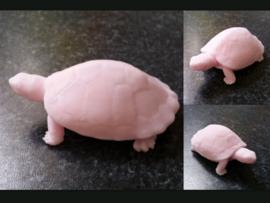 schildpad mal