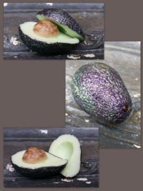 Avocado mal