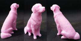 Golden Retriever 3D mal