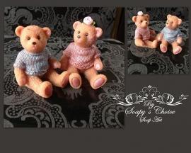 Teddy bear met truitje mal